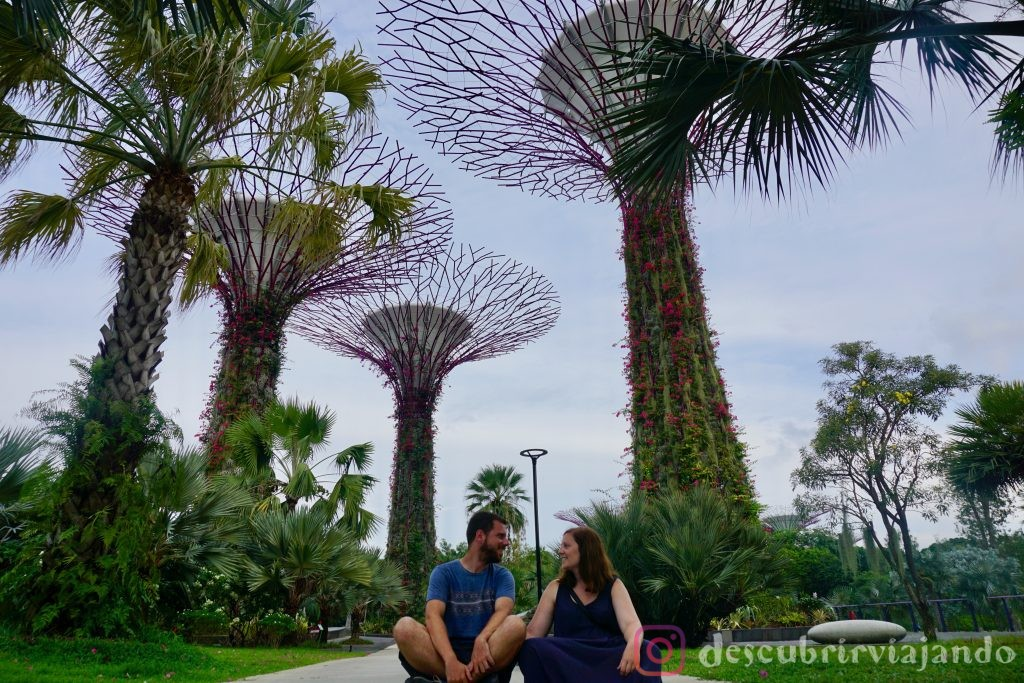 Singapur: Gardens by the bay diurno