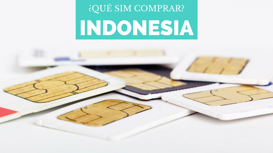 SIMS indonesia
