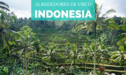 [Indonesia] Alrededores de Ubud