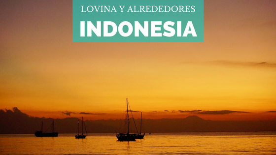 [Indonesia] Lovina y alrededores