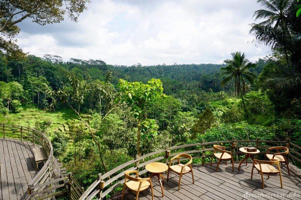 Terraza Bali Pulina Ubud
