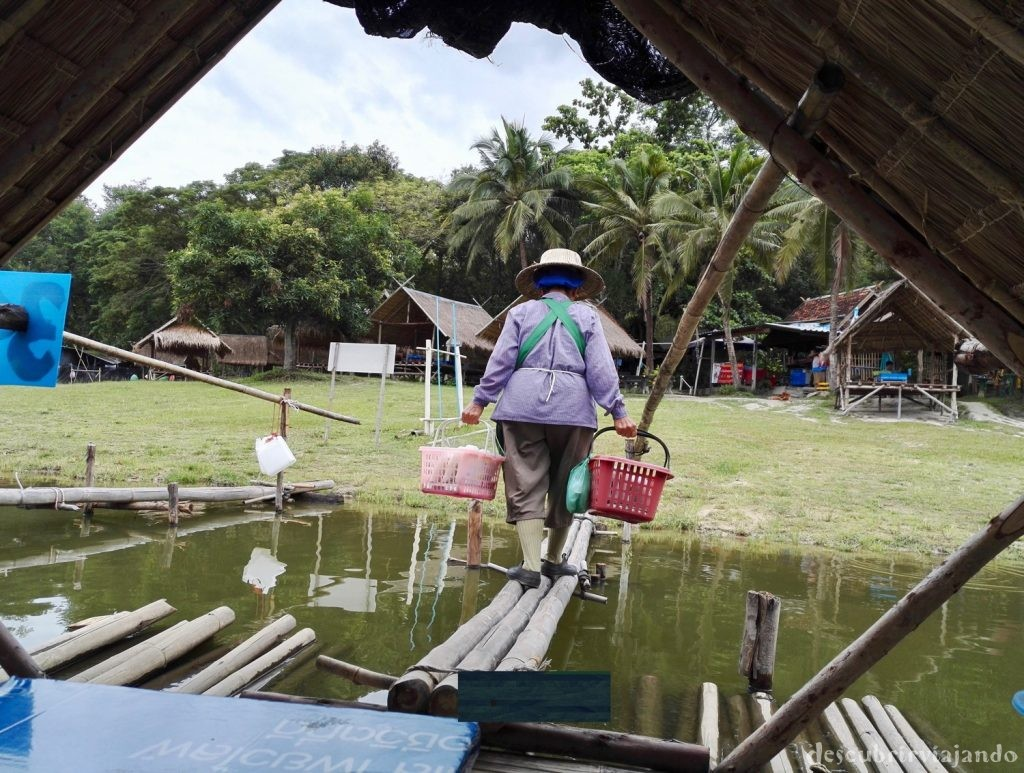 Trabajador-lago-Chiang-Mai