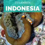 Snorkel en Bali: Tulamben y Amed