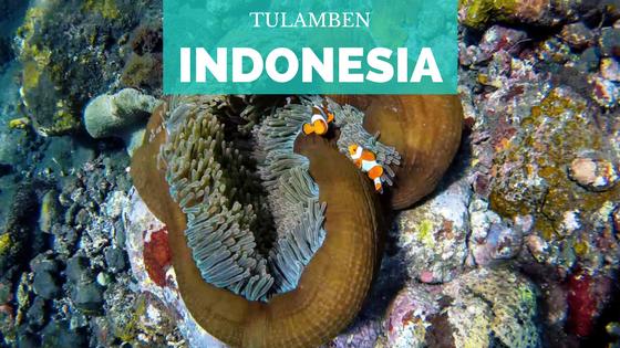 [Indonesia] Tulamben Bali