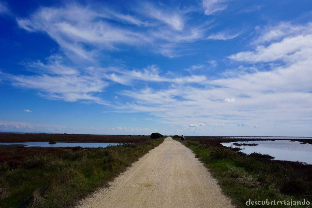 La Camarga camino